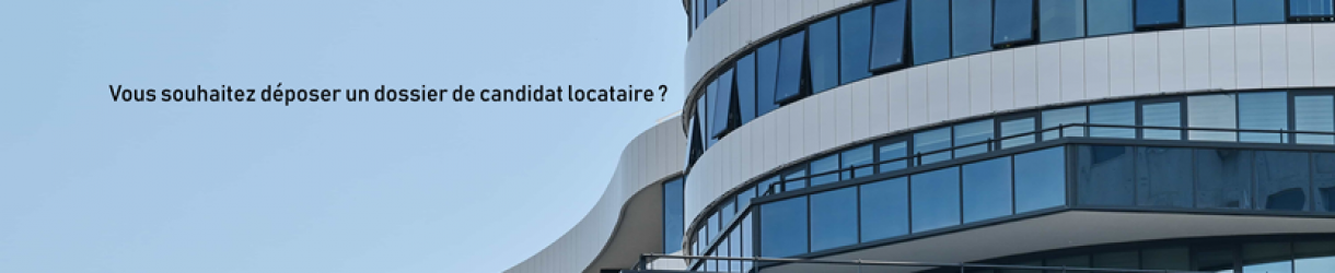 Questionnaire Dossier Candidat Locataire